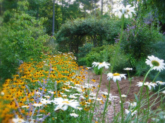 flowers at Bent Creek Lodge