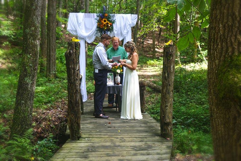 Blue Ridge Parkway Wedding couple