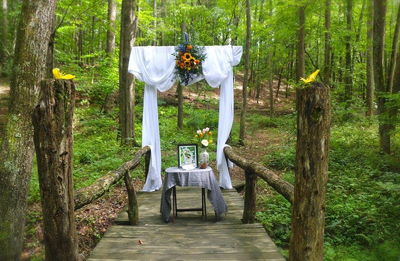 Asheville Wedding on Bridge